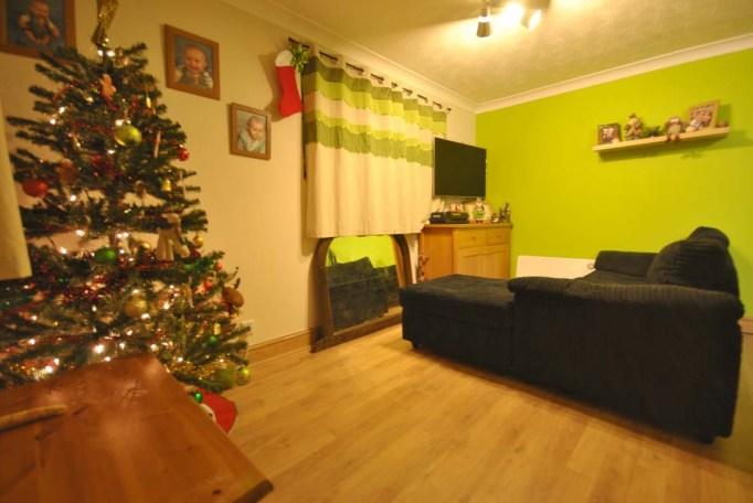 09.12.13 Christmas tree 1